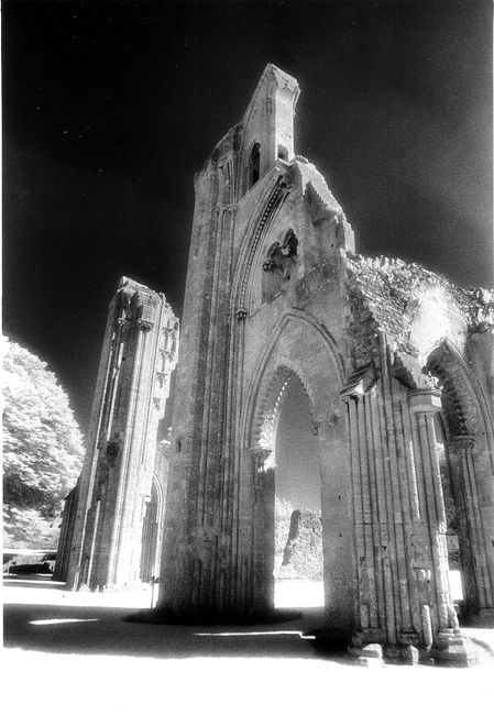 The Abbey ruins Glastonbury